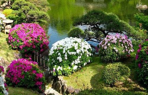 29 gorgeous-japanese-garden-ideas (18)