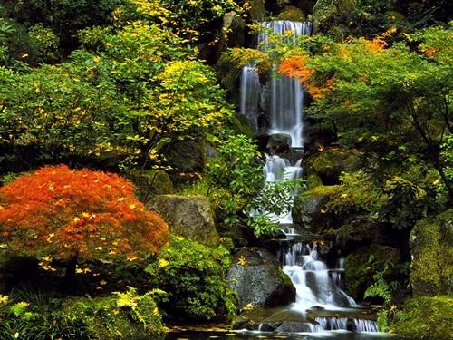 29 gorgeous-japanese-garden-ideas (21)