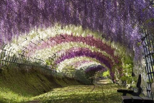 29 gorgeous-japanese-garden-ideas (27)