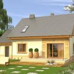 บ้านขนาดกะทัดรัด สไตล์ร่วมสมัยที่เรียบง่าย เหมาะกับครอบครัวแรกเริ่ม