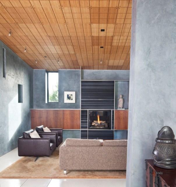Modern house With modern garden (10)