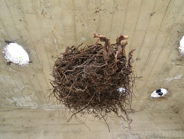 bunker concret home hides courtyard (9)