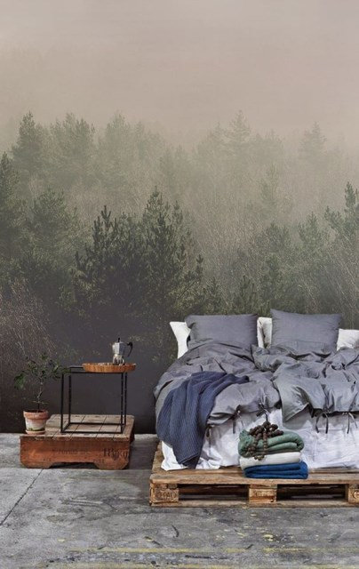 forest-wallpaper-murals