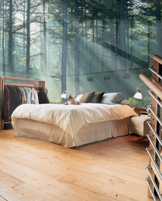 glass-nature-wallpaper-in-bedroom