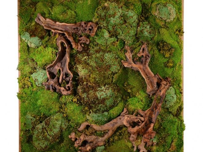 moss wall idea (2)