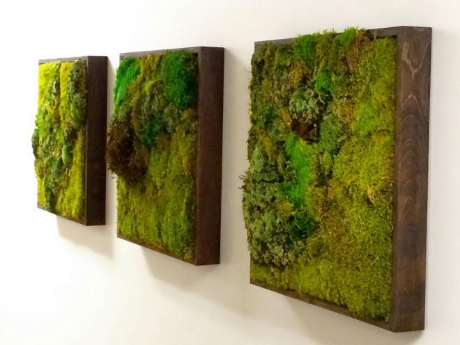 moss wall idea (4)