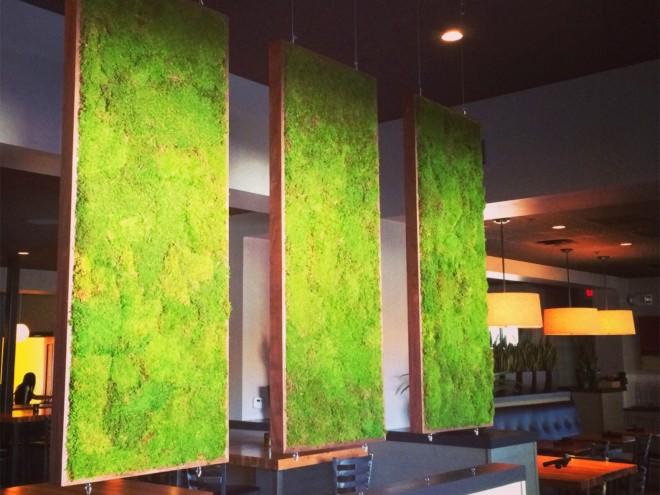 moss wall idea (5)