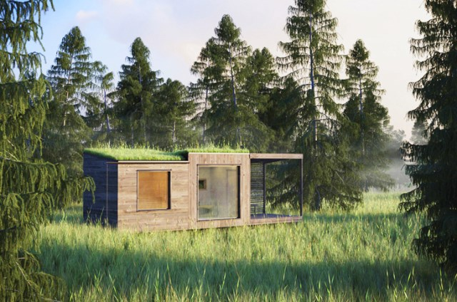 tiny house green roof (3)
