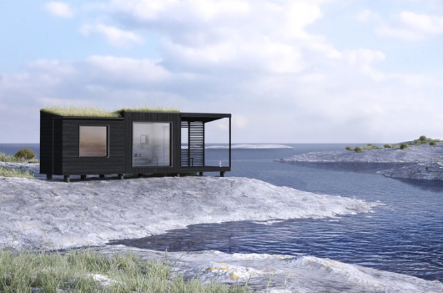 tiny house green roof (4)
