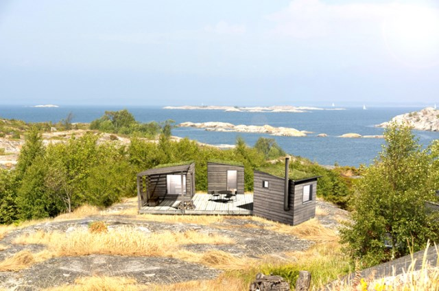 tiny house green roof (6)