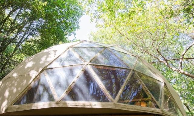 tiny-mushroom-dome-cabin (3)