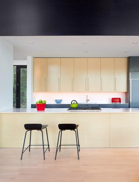 villa house Modern Style shape black dark (8)