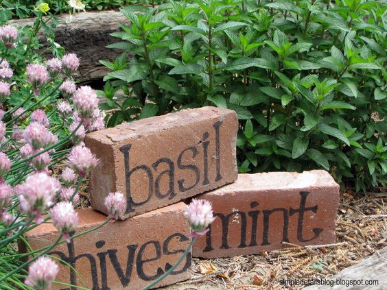 15-diy-signs-markers-garden (6)