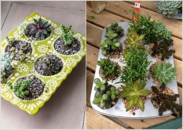 15 idea miniature garden (15)