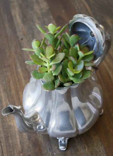 15 idea miniature garden (4)