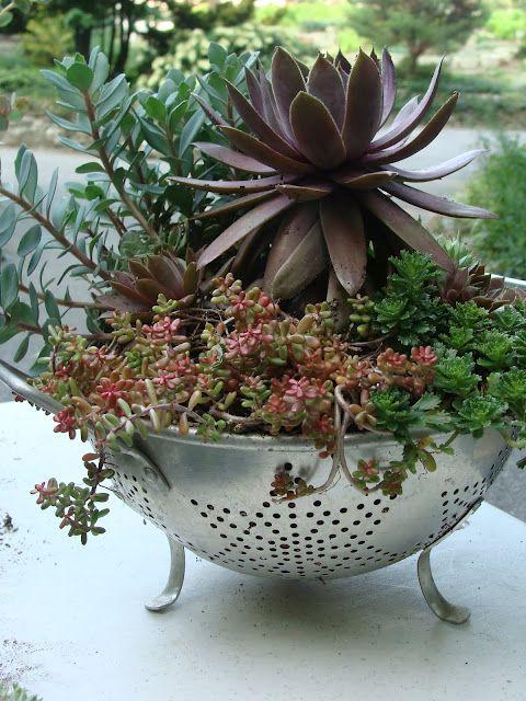 15 idea miniature garden (9)