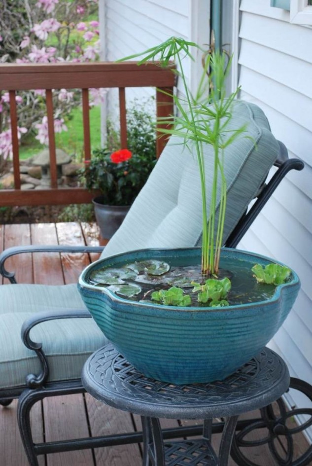 16 Mini Water Garden Inspirations (4)