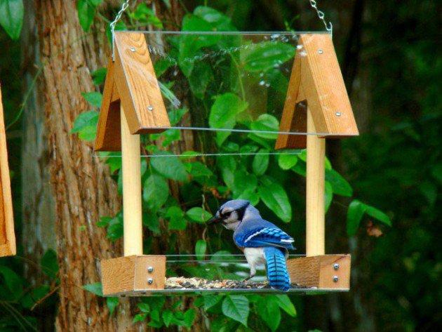 19-diy-birdhouse-designs (1)
