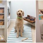 20 ไอเดียห้องซักรีด สำหรับคนรักสุนัขและแมว สองประโยชน์ในห้องเดียว