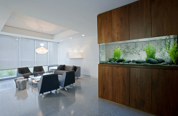 20-modern-aquariums-for-cool-interior (10)