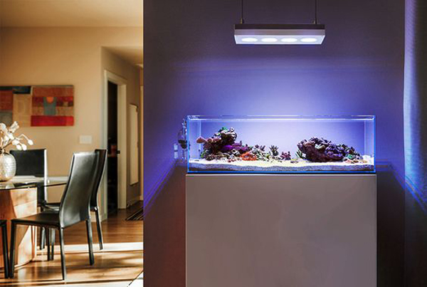 20-modern-aquariums-for-cool-interior (13)