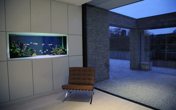 20-modern-aquariums-for-cool-interior (14)