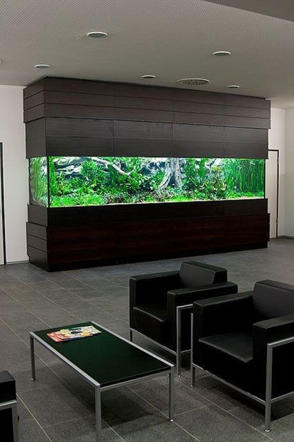 20-modern-aquariums-for-cool-interior (16)