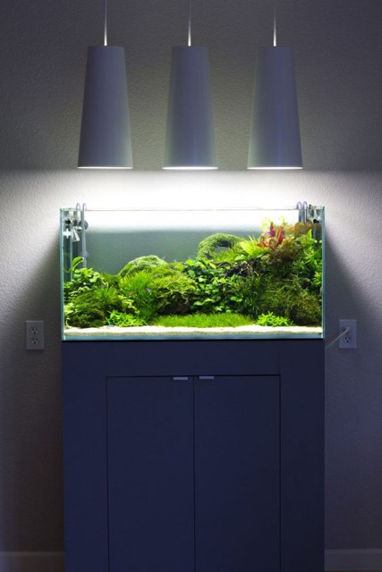 20-modern-aquariums-for-cool-interior (19)