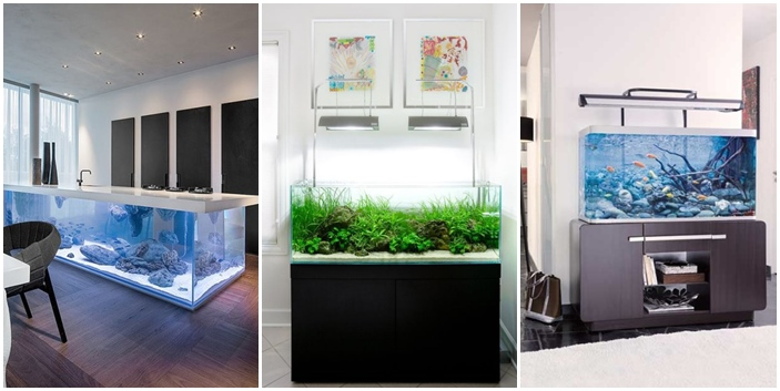 20-modern-aquariums-for-cool-interior (2)