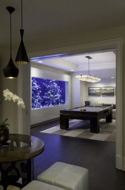 20-modern-aquariums-for-cool-interior (20)