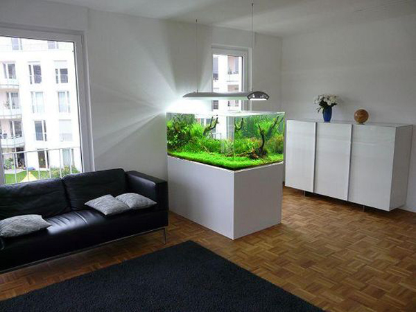 20-modern-aquariums-for-cool-interior (21)