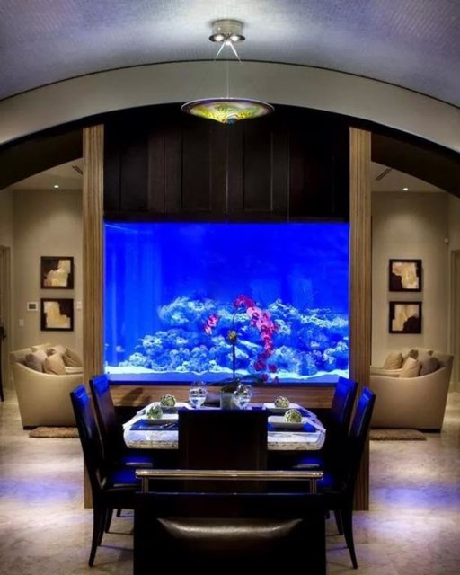 20-modern-aquariums-for-cool-interior (3)