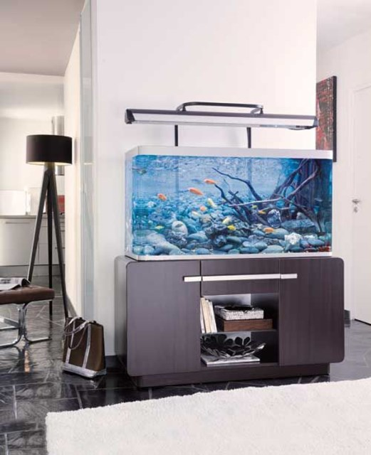 20-modern-aquariums-for-cool-interior (5)