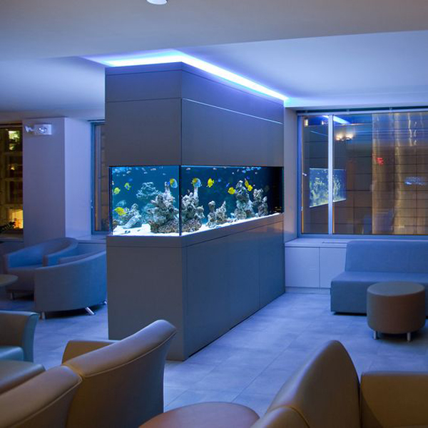 20-modern-aquariums-for-cool-interior (7)