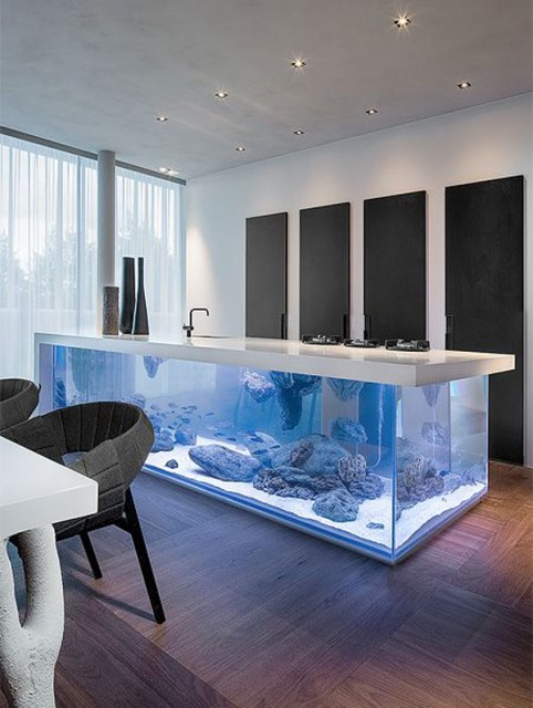 20-modern-aquariums-for-cool-interior (9)