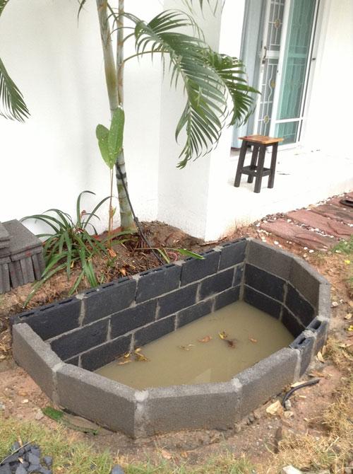 3k bht carp fish pond review (8)