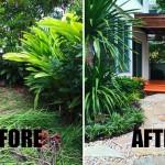 Review : จัดสวนด้วยตัวเอง 4 เดือนผ่านไป ได้สวนสวยในฝันมาไว้รอบบ้าน!!