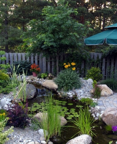 53 backyard pond ideas (16)