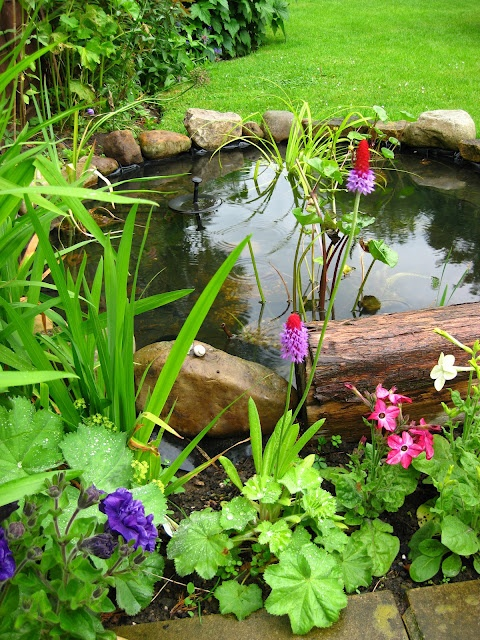 53 backyard pond ideas (20)