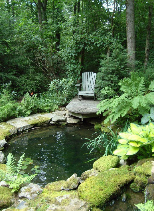 53 backyard pond ideas (22)