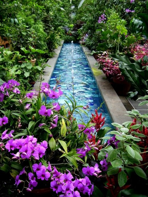 53 backyard pond ideas (23)