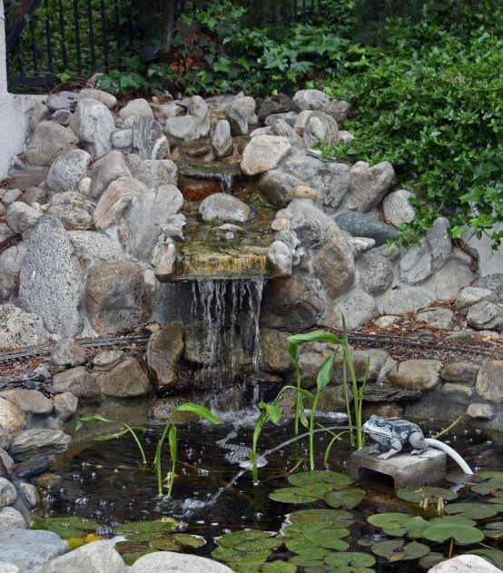53 backyard pond ideas (29)