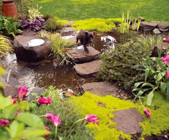 53 backyard pond ideas (35)