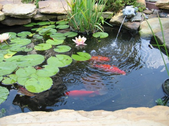 53 backyard pond ideas (36)
