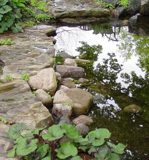 53 backyard pond ideas (37)