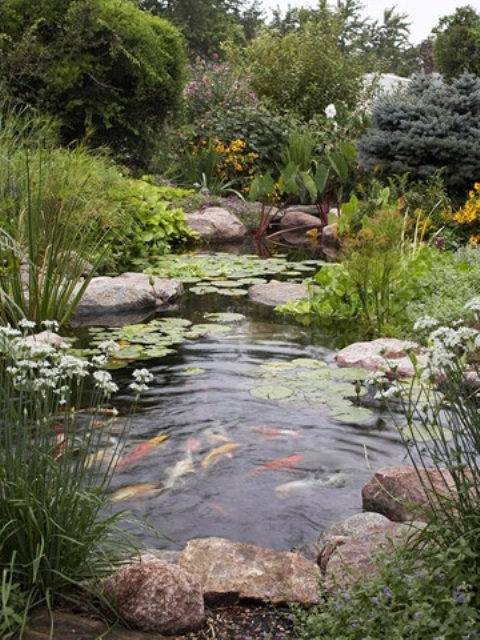 53 backyard pond ideas (39)