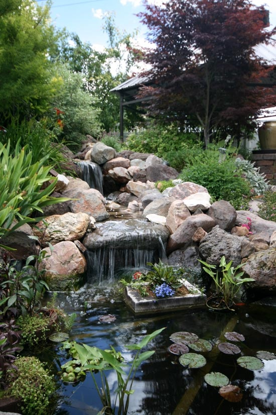 53 backyard pond ideas (41)