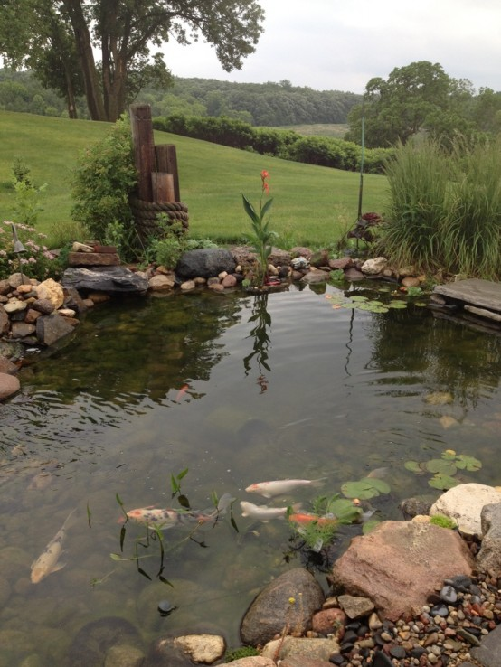 53 backyard pond ideas (42)