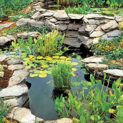 53 backyard pond ideas (43)