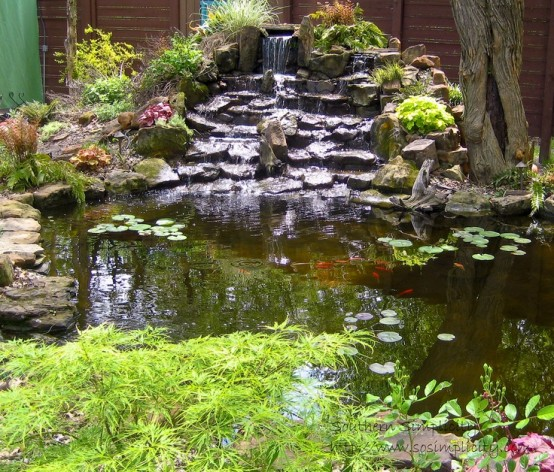 53 backyard pond ideas (44)